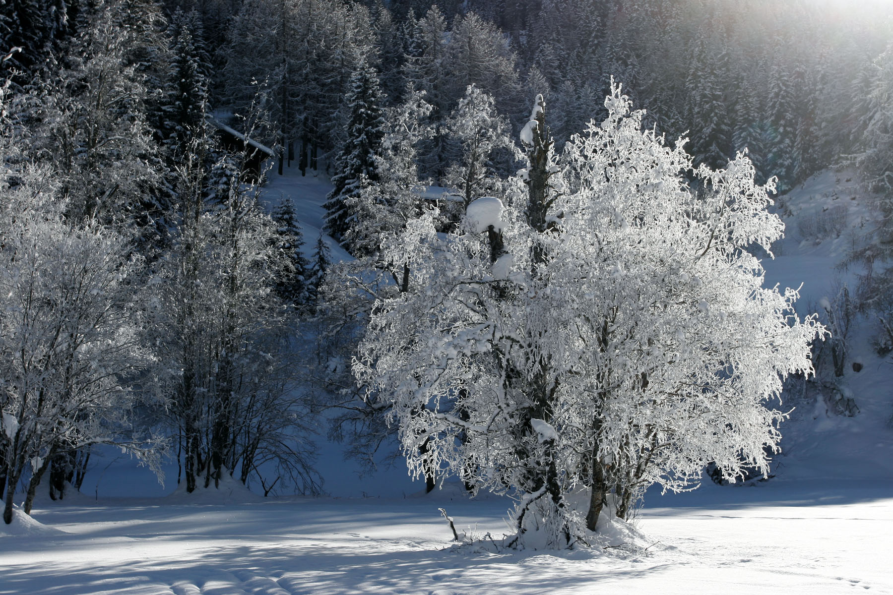 <div style='text-align: center;'>Gomstal im Winter (Wallis)</div>