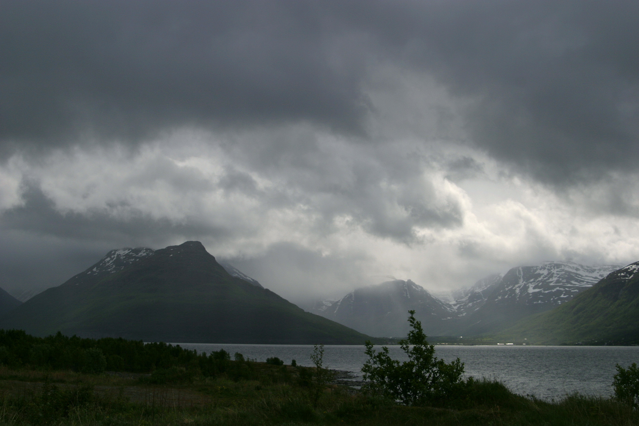<div style='text-align: center;'>Hamra Nationalpark (Schweden)</div>